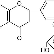 (PDF) Neuroprotective effect of liquiritin against focal