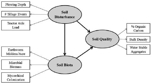 An example structural equation modeling (SEM) illustrat
