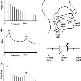 (PDF) The acoustics of snoring