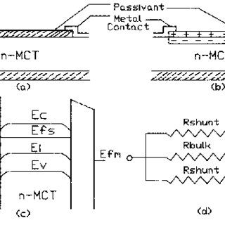 p-n junction photodiode: (a) structure of abrupt junction