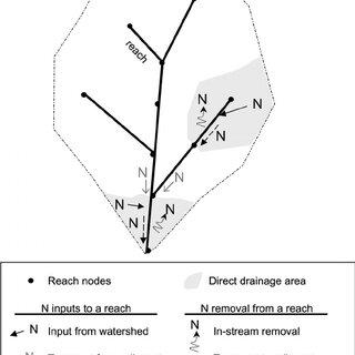 (PDF) Nitrogen retention in rivers: Model development and