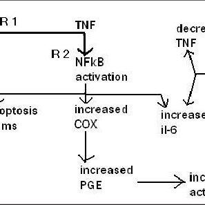 (PDF) Aspirin, TNF-alpha, NFkB, and survival in multiple