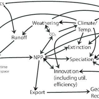(PDF) Seafood through time revisited: The Phanerozoic