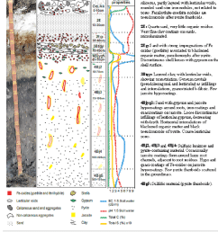 main macro and micromorphological features of actual acid sulfate soil profile bg11  [ 850 x 944 Pixel ]