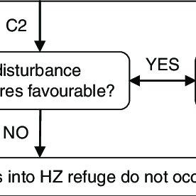 (PDF) The hyporheic zone as an invertebrate refuge: A