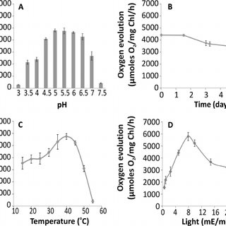 Non-photochemical quenching kinetics in C. merolae cells