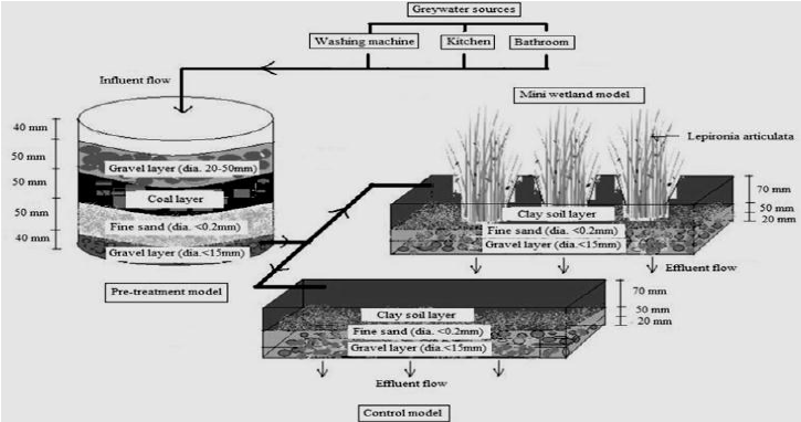 Schematic diagram of the mini constructed wetland