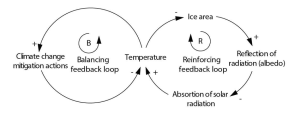 Example of balancing and reinforcing feedback loops