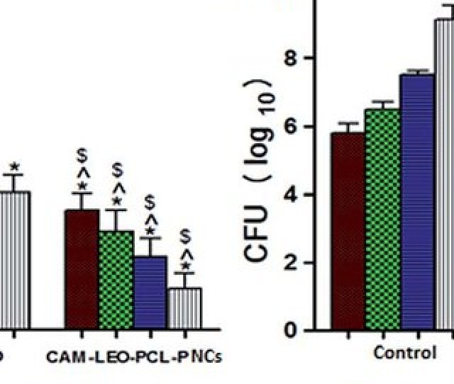 A Effect Of In Vivo Mrsa Burden On Topical Application Of Free Cam