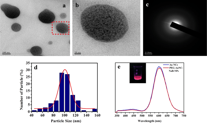 (a) TEM image of PEG−Au NC−NaB-NPs (scale bar 100 nm) with the portion... | Download Scientific Diagram