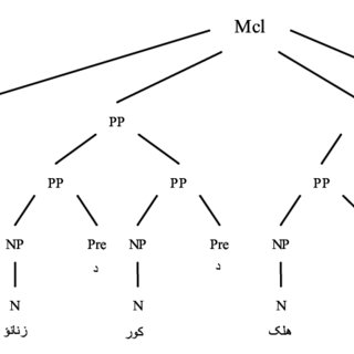 1 Types of Syntactic Ambiguities in Pashto Language