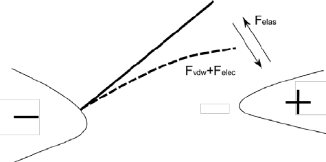The schematics of the jump-to-contact position of the