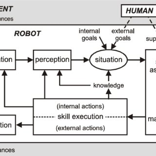 Perception-action cycle of a situation-oriented skill