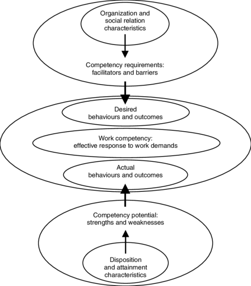 small resolution of 3 the central role of work competency in linking person and environment characteristics to effectiveness