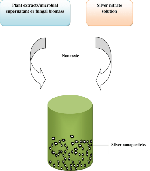 small resolution of green synthesis of silver nanoparticles