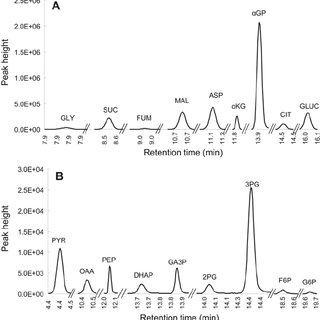 (PDF) Analysis of the Citric Acid Cycle Intermediates