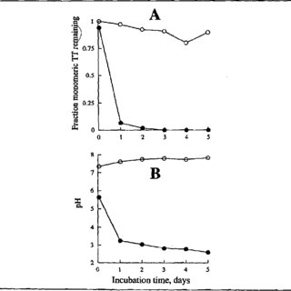 Effect of water content in the vaccine powder on the solid