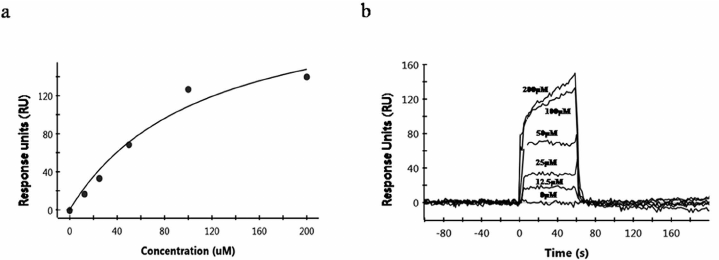 Kinetic analysis of a compound-prion protein (PrP C