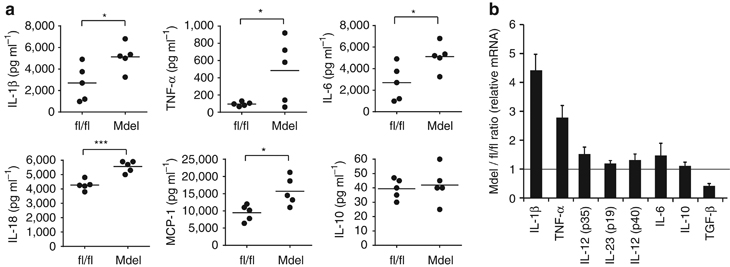 Inflammatory cytokine production by IL-10Rα-deficient