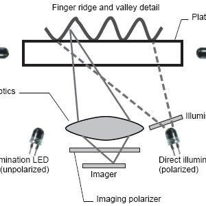 (PDF) Multispectral imaging for Biometrics