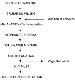 schematic diagram for extraction of olive oil by enzymatic treatment [ 850 x 1111 Pixel ]