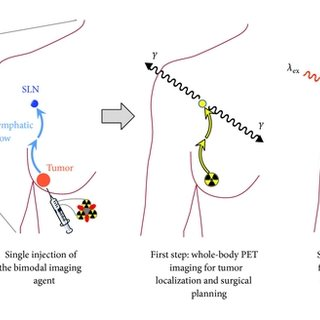 Structures of dually labeled PET radionuclide and