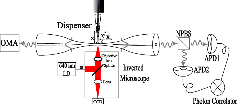 (Color online) Schematic diagram of the experiment. The