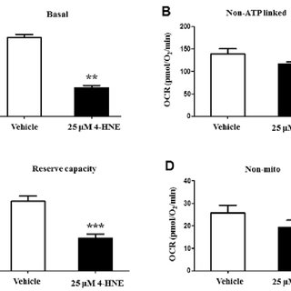 Assessment of mitochondrial dysfunction by JC-1 staining