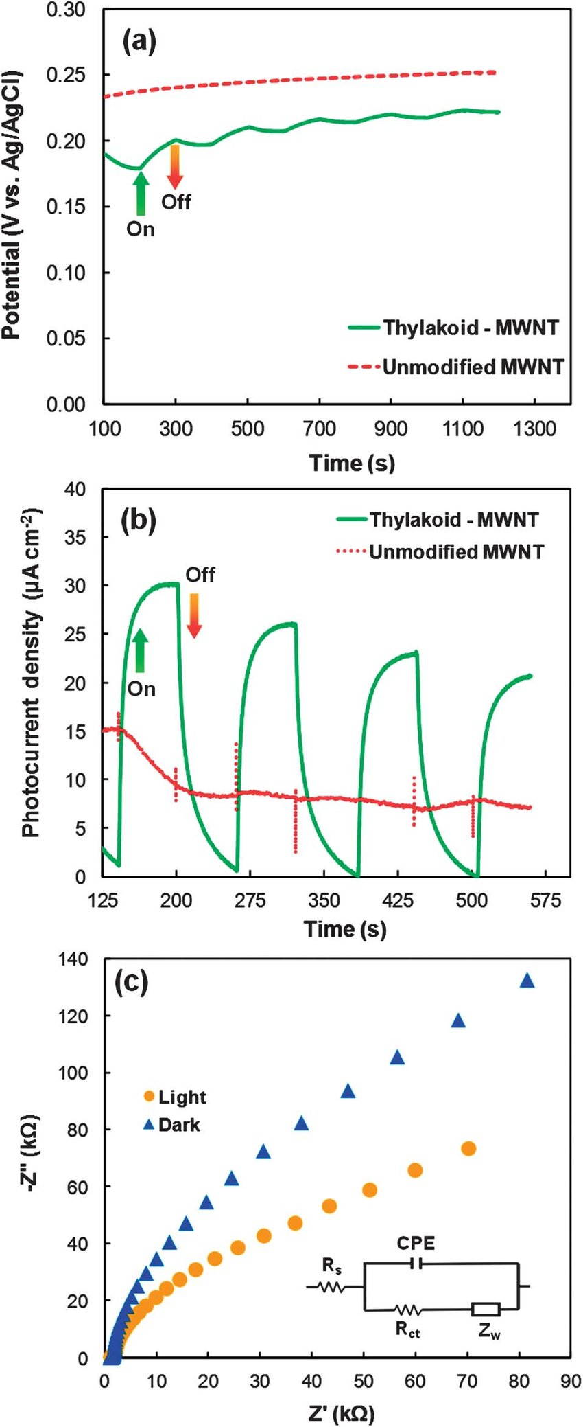 hight resolution of  a open circuit potentials of unmodified control and thylakoid modified mwnt electrodes
