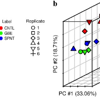 Differential methylation and differential gene expression