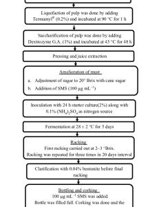 flow chart for making anthocyanin rich sweet potato wine also rh researchgate