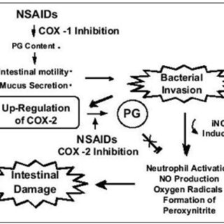 Articles on the effect of NSAIDS and selective COX2