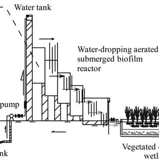 (PDF) Constructed Wetland in a Compact Rural Domestic