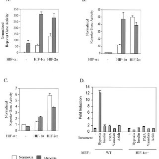 Lack of transcriptional activity of constitutively