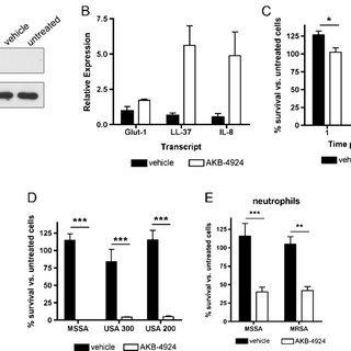 (PDF) A new pharmacological agent (AKB-4924) stabilizes