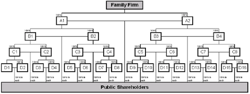 A Stylized Pyramidal Business Group Large listed