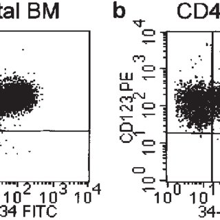 CD123 expression on normal and leukemic hematopoietic
