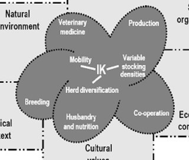 Model Of Pastoralists Knowledge In Opportunistic Range Management Adapted From Sandford