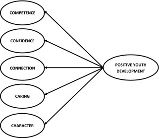 The 5 C's Lerner's Positive Youth Development Model