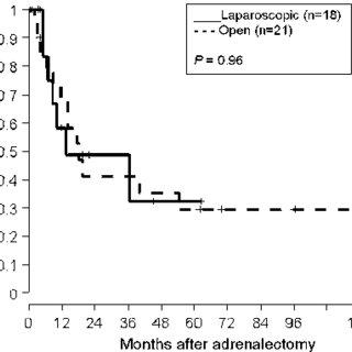 (PDF) Adrenal Incidentaloma, Borderline Elevations of