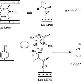 Common non-covalent adsorption mechanisms of surfactants