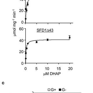 (PDF) Biochemical and Molecular-Genetic Characterization