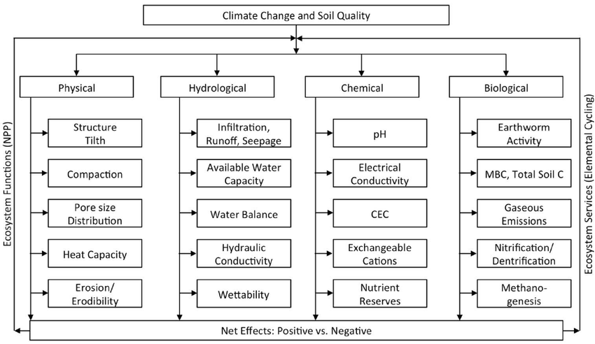 The effects of climate change on alterations (negative or
