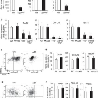 (PDF) A TLR and Non-TLR Mediated Innate Response to