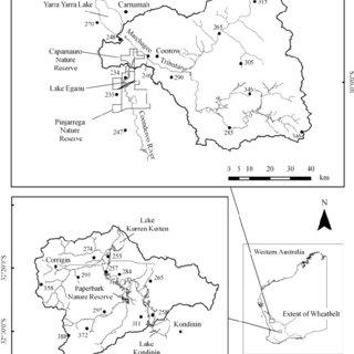(PDF) Monitoring wetlands in a salinizing landscape: Case