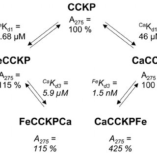 Ferric ions enhance CCK 8 PO 4 absorbance At pH 4.0 (A,C