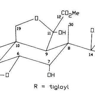 (PDF) Contenido de azadiractina a en semillas de nim