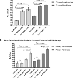 detection of h 2 o 2 a or sr b induced mtdna damage in human primary skin cells results generated from three primary adult keratinocyte or fibroblast  [ 850 x 1013 Pixel ]