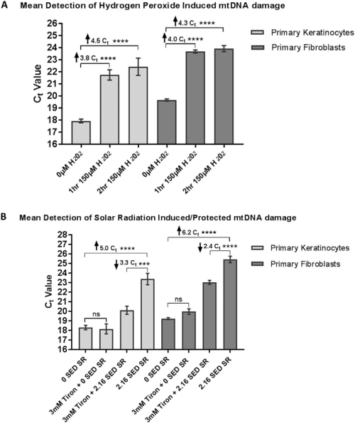 small resolution of detection of h 2 o 2 a or sr b induced mtdna damage in human primary skin cells results generated from three primary adult keratinocyte or fibroblast