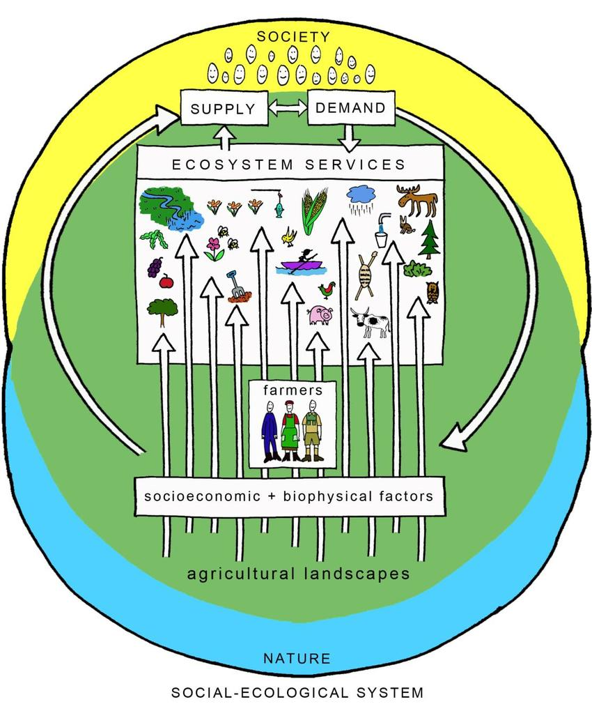 hight resolution of the figure illustrates the agricultural landscape as a social ecological system supplying multiple ecosystem services